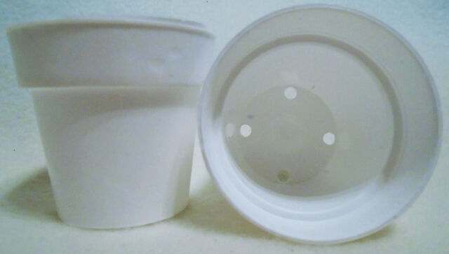50 2 Inch White Plastic Flower Pots Made In The Usa Ebay