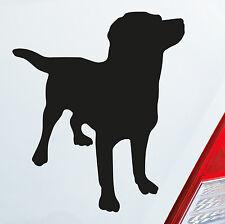 Auto Aufkleber Sticker Labrador Labbi Retriever Dog Hund Dog Tier Sticker 812