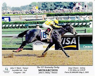 "Gato Del Sol 1982 Kentucky Derby Photo 8/"" x 10-24/"" x 30/"""
