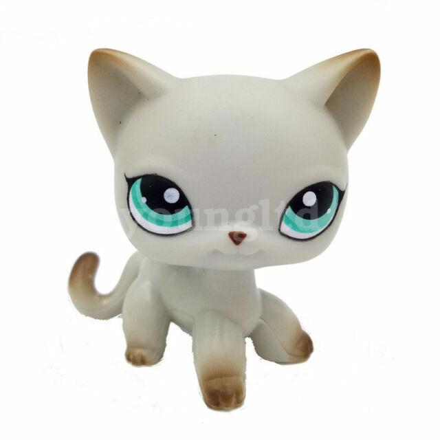 Littlest Pet Shop Short Hair Cat Lps Toy 391 Egyptian Dark Gray Kitty Green Eye For Sale Online Ebay