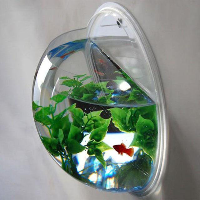 FISH TANK WALL MOUNTED BOWL AQUARIUM HANGING PLANT POT + PLANT & STONES KIDS