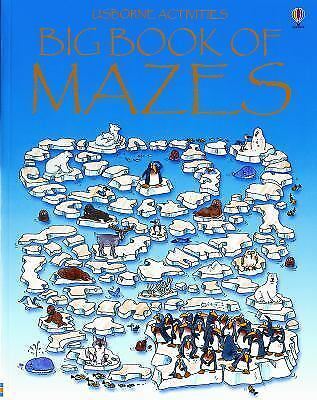 Big Book of Mazes (Maze Fun)