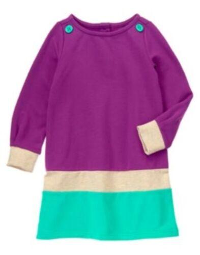 GYMBOREE COLOR HAPPY PURPLE COLORBLOCK FLEECE L//S DRESS 4 5 6 7 12 NWT