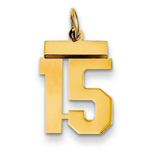 14K Yellow Gold Small Number 15 Charm Pendant MSRP $260