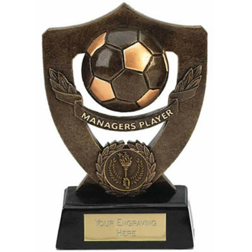 Celebration Football Shield Trophy Multiple Award Options Free Engraving