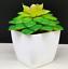 Artificial-Succulent-Plants-Small-Fake-Succulent-Bonsai-Garden-Miniature-Decor thumbnail 9