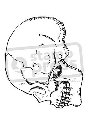 A7 'Sideways Skull' Unmounted Rubber Stamp (SP00001167)