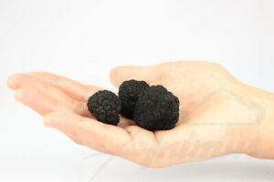 Black-Truffles-Whole-Truffle-25g-Wild-Edible-Fancy-Tartufo-Italy-Fresh-Food