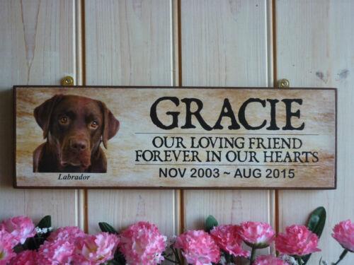 Muestra agradable jardín Letrero Regalo Personalizado Labrador signo Labrador regalos únicos