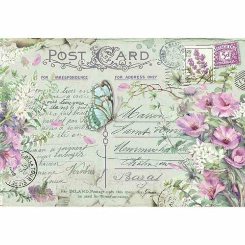 DFS417 Violets and Butterfly Stamperia Rice Paper 48x33cm Decoupage Mixed media