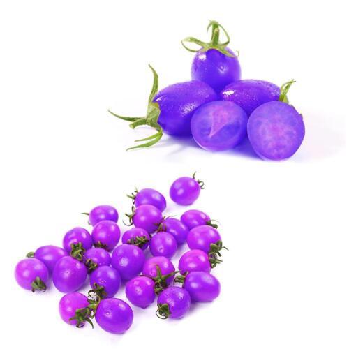20pcs//bag Purple Cherry Tomato Potted Heirloom Non-GMO Green Plant Seeds !