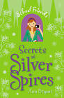Secrets at Silver Spires by Ann Bryant (Paperback, 2008)