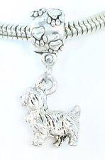 3D Terrier or Shih Tzu Dog Lover Pawprint Slider Charm for Bracelets Or Necklace