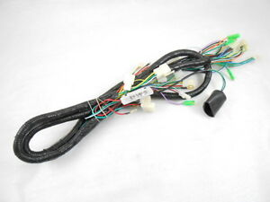 TAOTAO BWS 150CC SCOOTER COMPLETE WIRING HARNESS *NEW*   eBay on scooter lights, scooter fuel pump, scooter voltage regulator, scooter water pump, scooter gas tank, scooter wheels, scooter air filter, scooter speedometer,