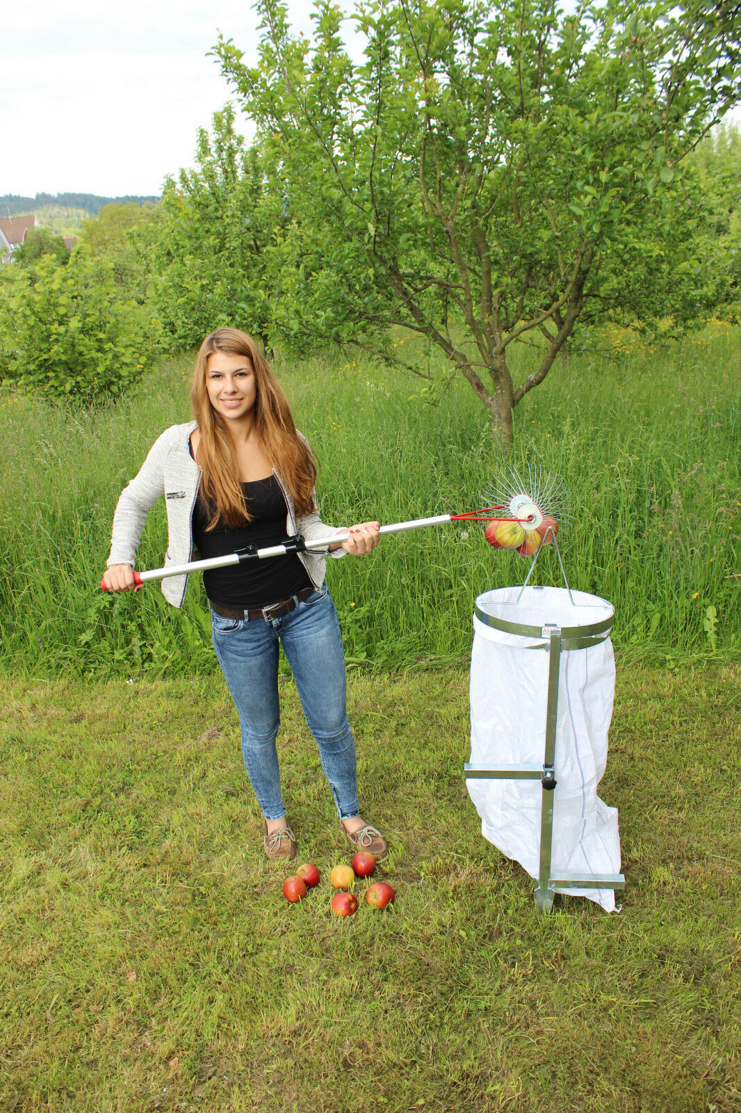 Apfelsammler mit Holzstab- der  Roll-Blitz  Made in in in Germany | Sale Outlet