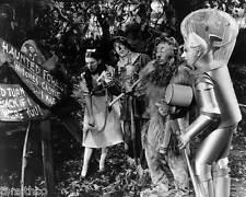 Wizard of Oz Cast 8x10 Photo 003