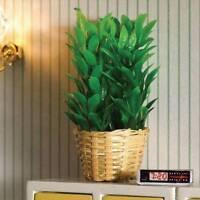 Bushy Plant In Basket, Dolls House Miniatures Plants & Flowers 1.12 Scale