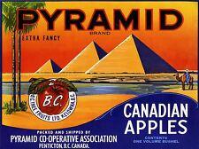 ADVERTISING FOOD FRUIT APPLE PYRAMID EGYPT CANADA PALM DESERT CANADA PRINT LV888