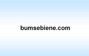.com Domain Verkauf - www.bumsebiene.com - mit Rechnung