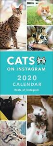 Cats-on-Instagram-2020-Official-Slim-Wall-Calendar