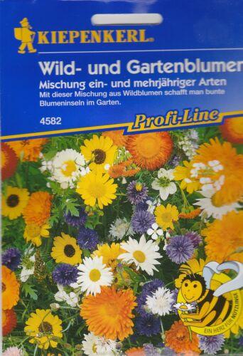 Kiepenkerl fleurs sauvages jardin et de FLEURS Mélange graines fleurs 4582