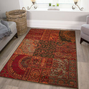 Warm Orange Red Rugs Traditional Living