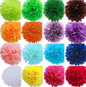 12 Colorful Tissue Paper Pom Poms Flower Ball Wedding Birthday