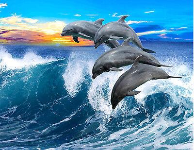 "Jumping Dolphins Huge Towel Blanket 54"" X 68"""