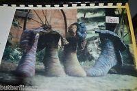 Koigu Fun Socks Knitting Booklet $12 Retail