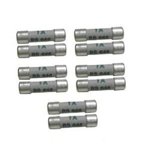 PACK OF 5 FUSES 1 Amp Fuse x 5 BS646 Shaver Fuse Toothbrush Adaptor Fuses x 5
