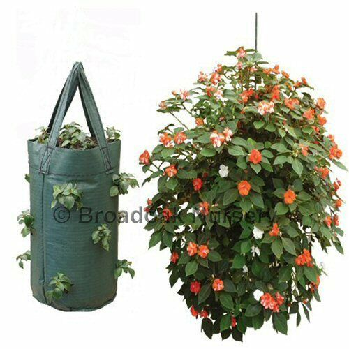 STRONG HANGING GROW BAG Strawberry Planter Flower UV Treated Herb Tomato