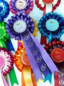 Clear Round Rosettes Horse Rosettes Horse Show Rosettes x 20 mixed colour