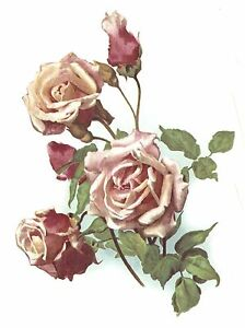 Pink-Rose-Anna-Olivier-Spray-Select-A-Size-Waterslide-Ceramic-Decals-Bx