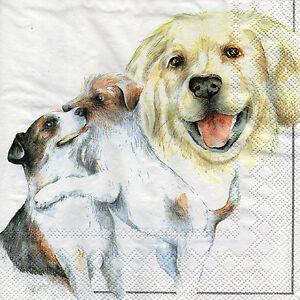 4-Servietten-Napkins-Tovaglioli-Serviettentechnik-Tiermotiv-Hunde-989