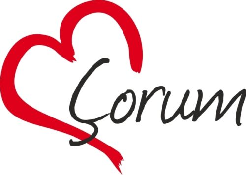 """Voiture autocollant /""""Corum/"""" sticker ville turquie environ 9x13cm contour découpé"""