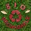 Hemway-Eco-Friendly-Craft-Glitter-Biodegradable-1-40-034-100g thumbnail 239