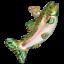 Old-World-Christmas-ALPINE-RAINBOW-TROUT-fish-12494-N-Glass-Ornament-w-OWC-Box thumbnail 1