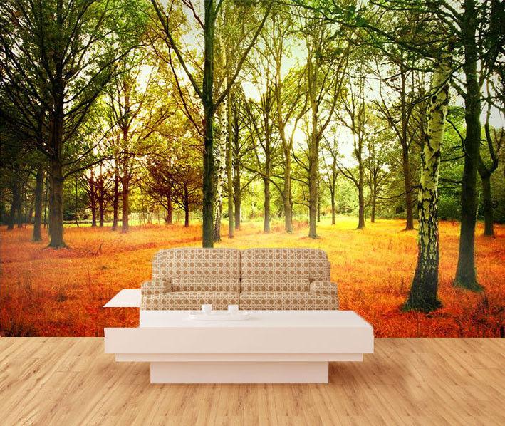 3D Sonnenschein Wälder Wiese 803 Tapete Wandgemälde Tapeten Bild Familie DE Kyra