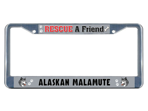 Alaskan Malamute Dog Rescue a Friend Chrome Metal License Plate Frame Tag Border