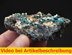 7604-Lazulith-lazulite-Siderit-ca-4-4-5-9cm-Rapid-Creek-Yukon-Kanada-1995-MOVIE
