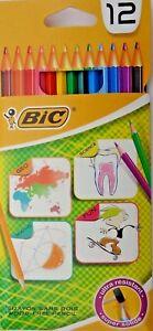 12 x Buntstifte in Hülle Farbstifte Malstifte Kinderstifte Malen Schule