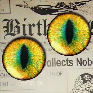 Yellow Green Glass Eyes Realistic Animal Taxidermy Eyeballs 16mm