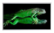 600W Fern Infrarotheizung Salamanda Bild Elektroheizung Überhitzungsschutz TÜV