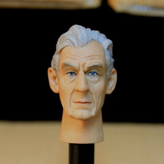 HOT HOT HOT FIGURE TOYS 1 6  HEADPLAY Ian McKellen headcarving Magneto Max Eisenhardt 0299a3