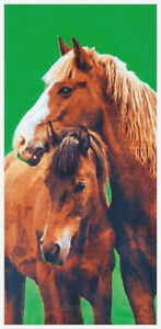 30-034-x-60-034-Country-Horses-Velour-Beach-Towel