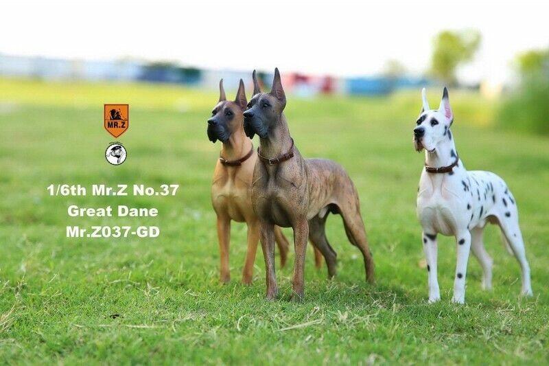 Mr. Z Animal modellolo No.37 16th The Geruomo Great Dane Dog Pet cifra modellolo