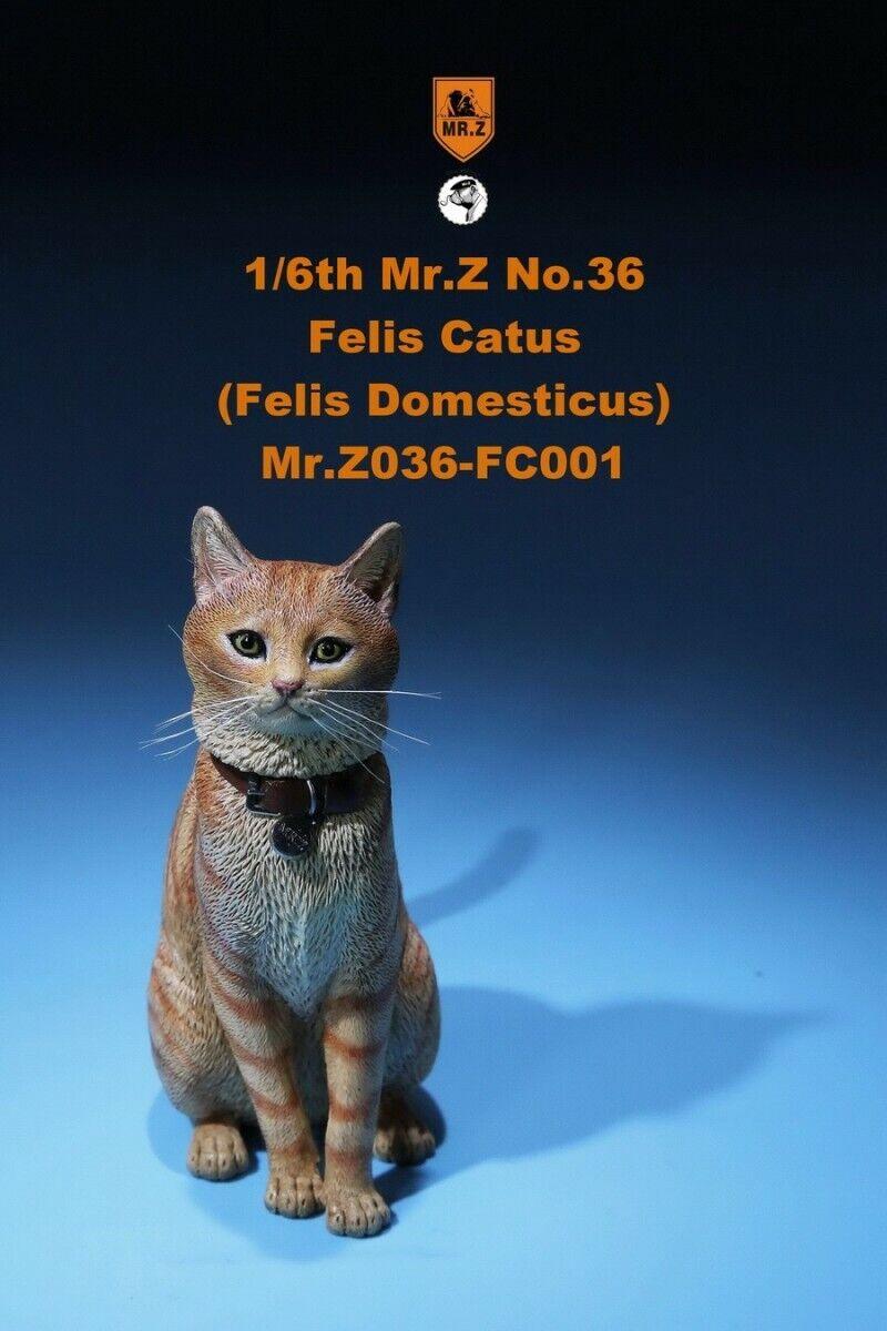 1 6 Mr. Z MRZ036 FC001 House Cat Animal Model 12'' Figure Accessory Felis Catus
