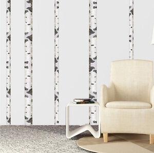 Image Is Loading Birch Tree Wall Decal Aspen Trunk Wallpaper Vinyl