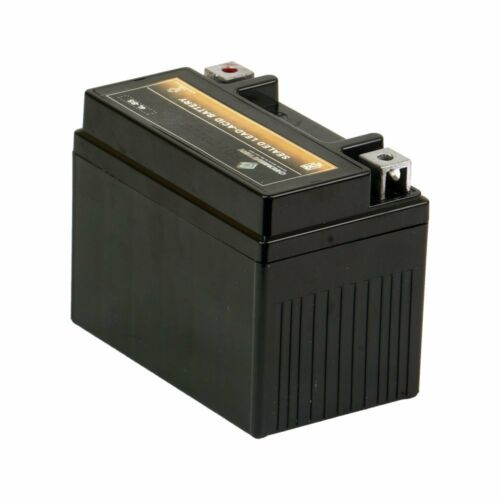 12V Battery For Coolster 3125R 3125XR8U 3125XR8 3125A Atv Quad 125cc