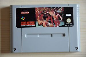 Snes-pit-fighter-pour-super-nintendo